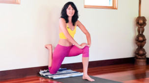 beginner bird of paradise  yoga videos  grokker