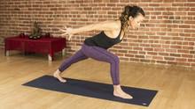 beginners yoga for relaxation  sleep flexibility